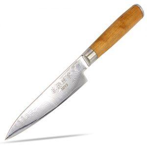 Messer Küchenmesser 67-lagig 67 Lagen Japan Damast Damazener Stahl – DEBA Klinge 130 x 30 x 2,5 mm – Griff aus Kirschbaum-Holz – limitierte Auflage, edel und scharf japanische asiatische Küche