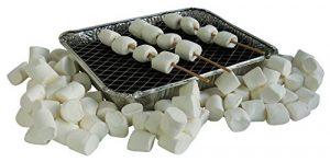 Grill Geschenk mit Marshmallow Spießen und Mini Holzkohlegrill, 1er Pack (1 x 500g)