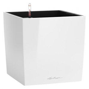 """LECHUZA """"CUBE Premium 30"""" Pflanzgefäß mit Erd-Bewässerungs-System, Weiß Hochglanz, 30 x 30 x 30 cm"""