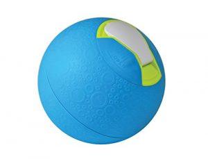 Yaylabs SoftShell Ice Cream Ball – Pint – Blue
