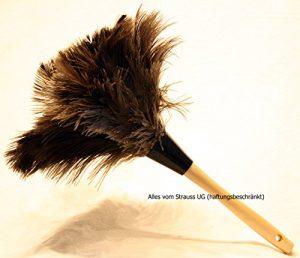 Staubwedel Straußenfedern mit grauen Federn – Gesamtlänge ca. 30 cm