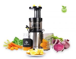 NUTRILOVERS Slow Juicer Entsafter Saftpresse   Entsaftet elektrisch Obst und Gemüse   nur 45 U/min   BPA-Frei – ULTEM   Rezeptbuch; silber
